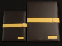 Portfolio Notebook - Iota Phi Theta (Two Sizes)
