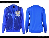 SGRHO SEQUENCE SWEATER