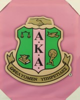 Alpha Kappa Alpha Canvas Wall Art